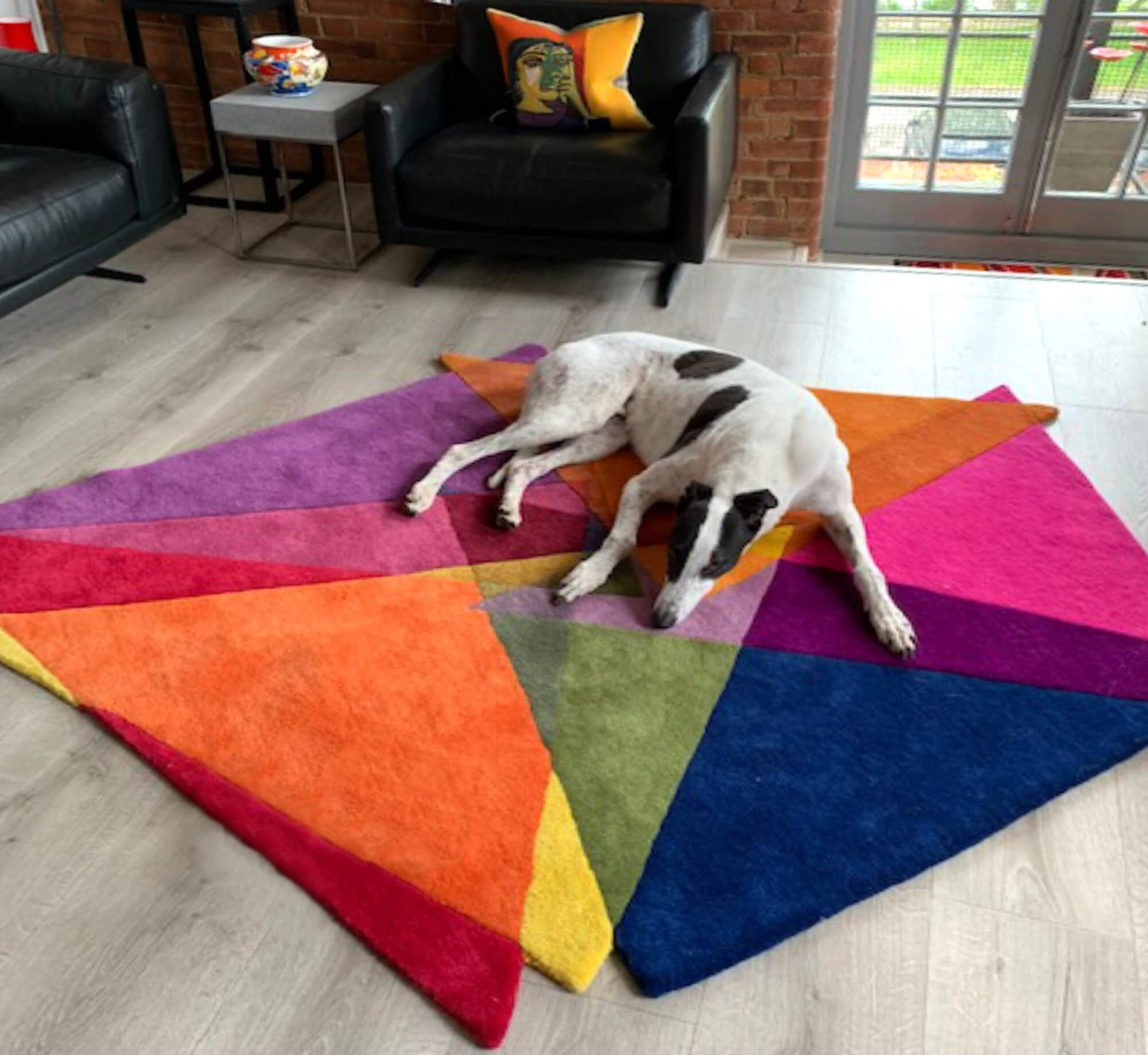 Pet Friendly Rugs - How to clean an expensive rug